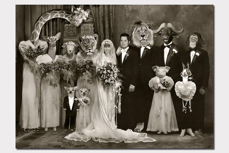 Phojoe Photo Manipulation With Animas for Wedding