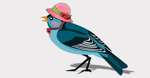 Phojoe Bird with Pink Hat